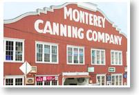 Big Sur and Moneterey Tours