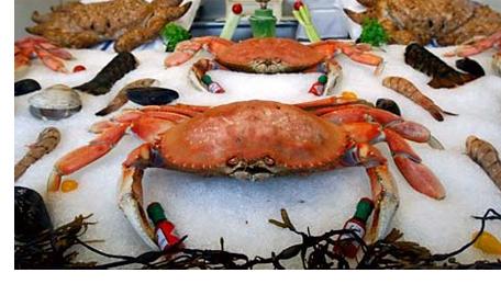 Crab season