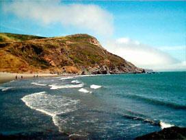 Muir Beach Look