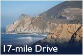 Monterey Tours - 17 Mile Drive